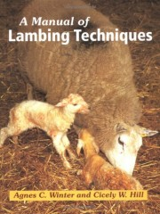 A Manual of Lambing Techniques by Agnes C. Winter & Cicely Hill