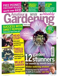 Amateur Gardening Magazine The Accidental Smallholder