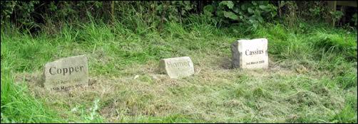 Cass's headstone.jpg