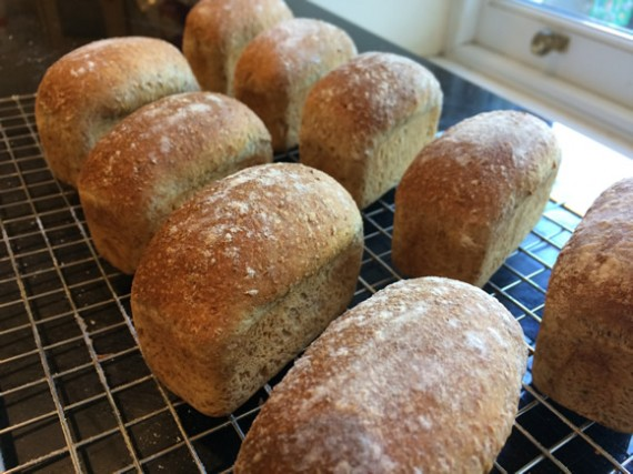 Mini wholemeal loaves