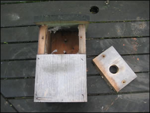 Nest box ready for cleaning