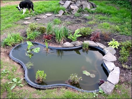 Garden Pond Edging Stones Oase Stone Liner Pond Edging