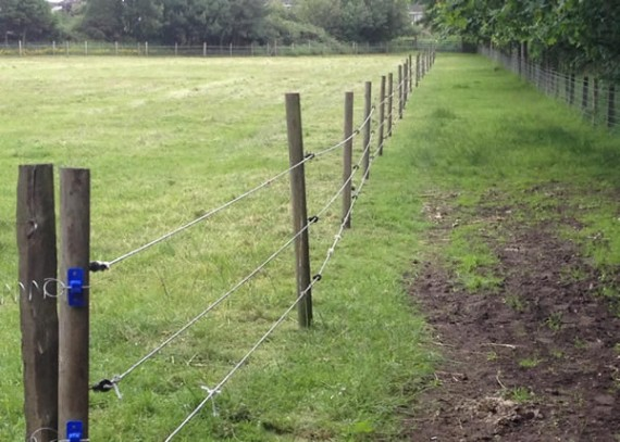 Sheepfold electric fence